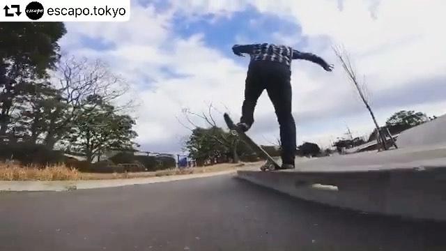 伝家の宝刀#repost @escapo.tokyo・・・ @akaguma1977 #skateboard #skatebag #bluntslide #スケボー #escapotokyo #舞浜スケートパーク #ollie #スケートボード #スケボーリュック