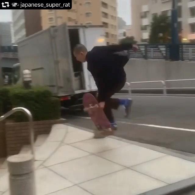 🐀#repost @japanese_super_rat・・・